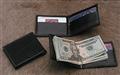 Shark Money clip wallet